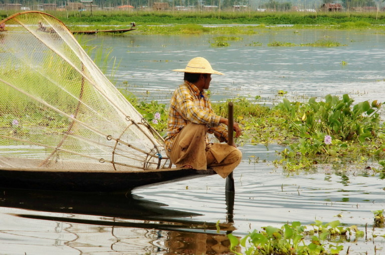 Fisherman at Inle Lake, Myanmar