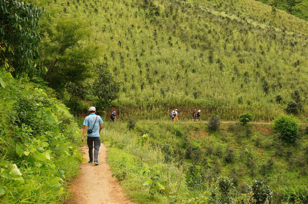 Trekking at Kalaw, Myanmar