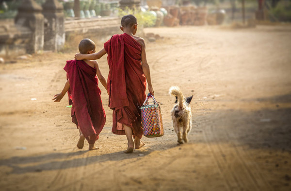 Young buddhist monks in Myanmar